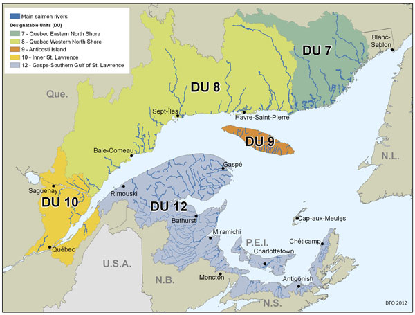 Figure 1. Map of the St. Lawrence Estuary and the Maritimes, where the five Atlantic Salmon population sare located. (See long description below)