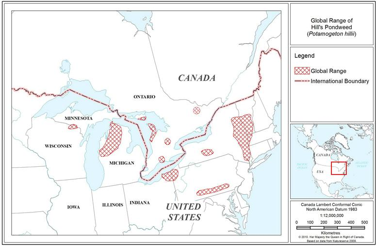 Map of Canadian distribution of Hill's Pondweed