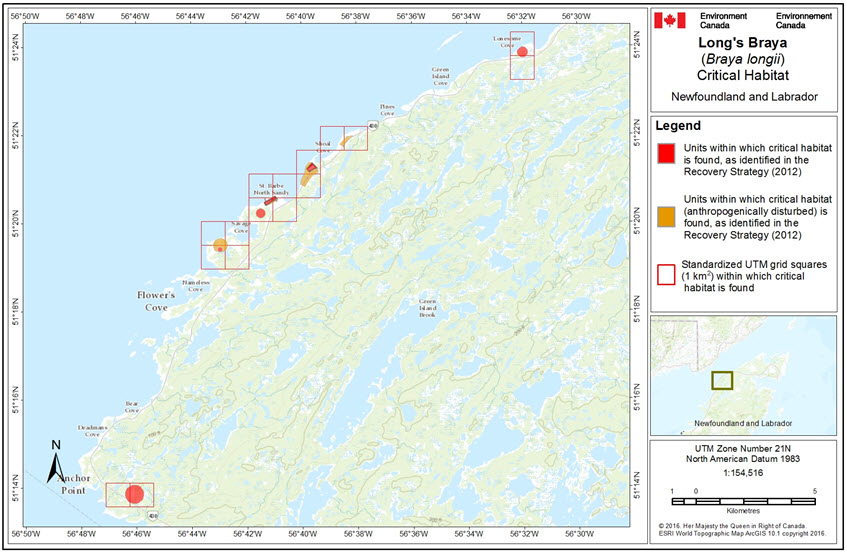 Critical habitat in Newfoundland and Labrador