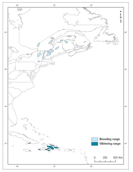 Map showing breeding and wintering ranges for the Bicknell's Thrush.