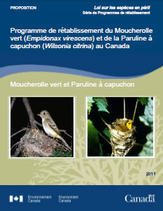 Cover of publication: Recovery strategy for the Acadian Flycatcher (Empidonax virescens) and the Hooded Warbler (Wilsonia citrina) in Canada [Proposed] - 2011