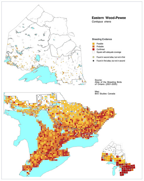 Elevation Wood Density : Species at risk public registry cosewic assessment and