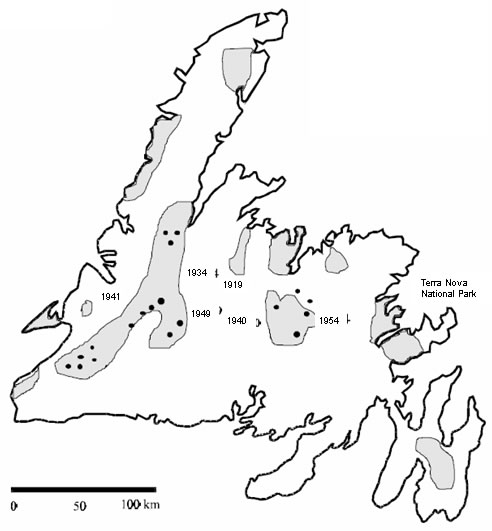 Figure 2 overlays sightings of marten in Newfoundland from the 1950's and 1960's with the distribution of mature forest at that time.