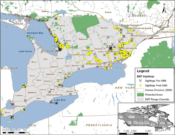 Map illustrating the Canadian range and sightings of the Eastern Musk Turtle.