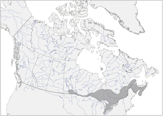 Map of the Canadian breeding range of the Wood Thrush