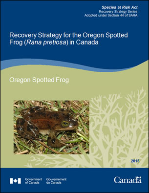 Cover photo: Management Plan for the McCown's Longspur