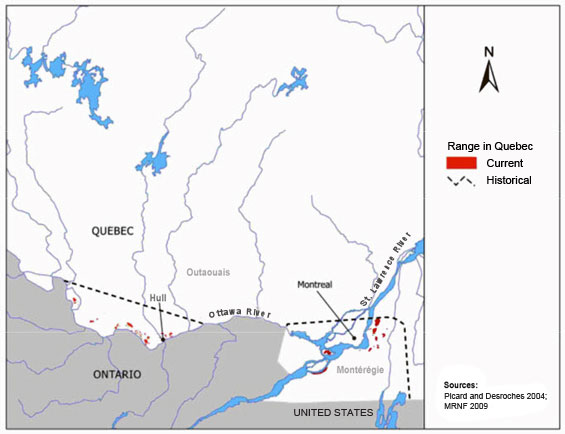 Figure 3. Historical and current ranges of the Western Chorus Frog (GLSLCS) in the Outaouais and Montérégie regions of Quebec (Gagné 2010). (See long description below)