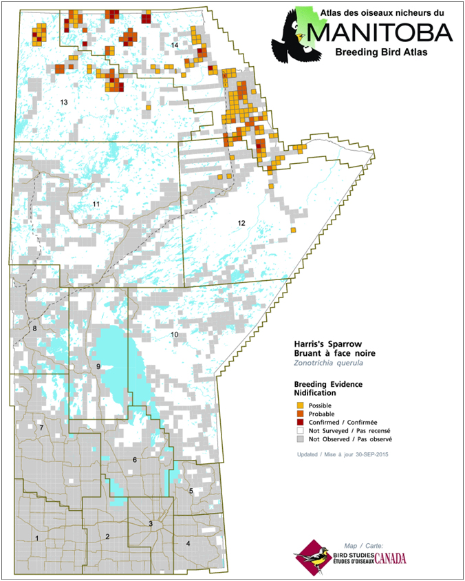 Species at Risk Public Registry - COSEWIC Assessment and