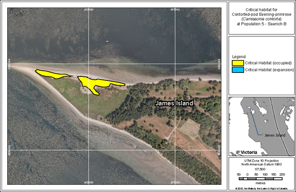 Location of critical habitat for Population 7 (Saanich D) at Sidney Island in Gulf Islands National Park Reserve