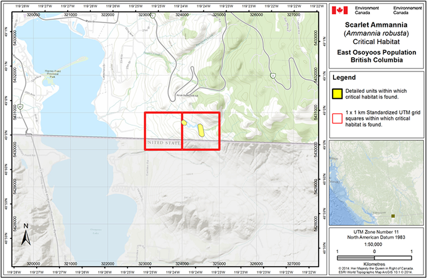 Map of critical habitat for the East Osoyoos Population (See long description below)