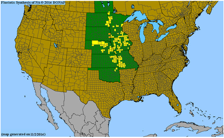 Global distribution of Western Prairie Fringed Orchid based on extant subpopulations.