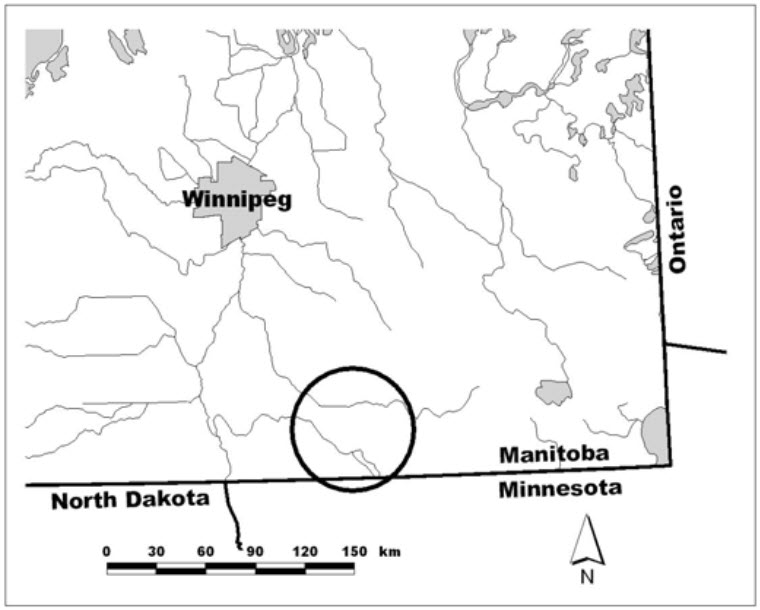 Location of Western Prairie Fringed Orchid population in Manitoba.