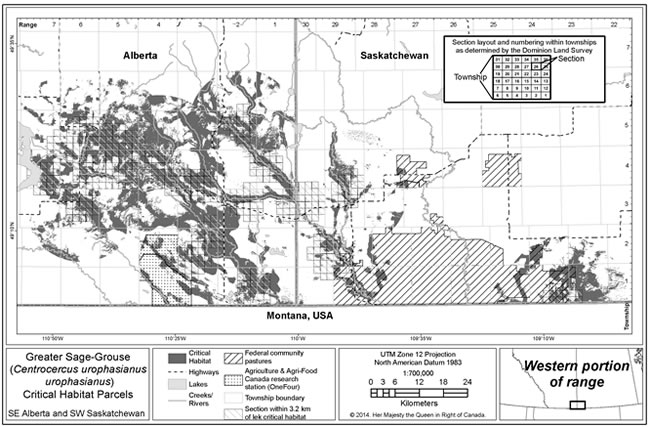Figure 3 is a map of model-based wintering, nesting and brood rearing critical habitat for Greater Sage-Grouse in the western portion of the species' range in Canada, which includes southeastern Alberta and southwestern Saskatchewan. (See long description below)