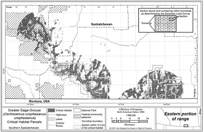 Figure 4 is a map of model-based wintering, nesting and brood rearing critical habitat for Greater Sage-Grouse in the eastern portion of the species' range in Canada, which includes a portion of southwestern Saskatchewan. (See long description below)