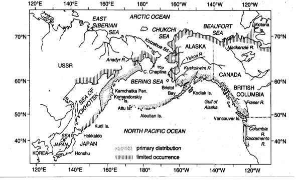 Map showing the distribution of Sockeye salmon populations along the coast of the North Pacific Ocean. Reproduced from Burgner 1991.