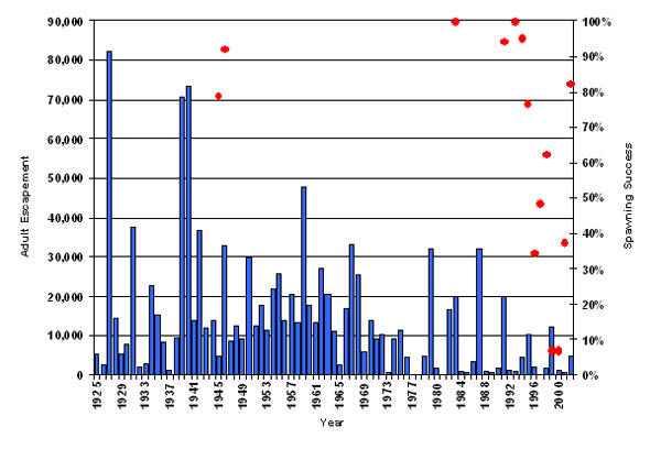 Bar chart showing the annual numbers of adults entering Cultus Lake (escapements) and points showing the spawning success wstimates for Cultus Sockeye adults, 1925-2002.