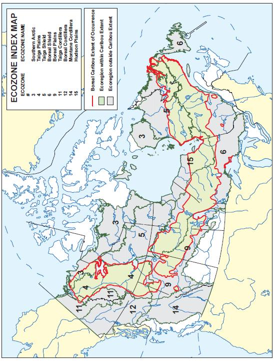 Map Of Canada Ecozones.Species At Risk Public Registry Scientific Review For The