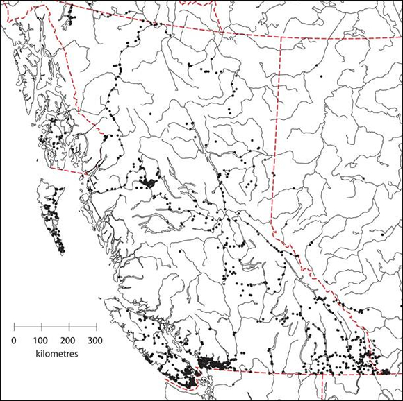 Map showing locations of searches for terrestrial molluscs in British Columbia and adjacent provinces and territories from 1999 to September 2011.