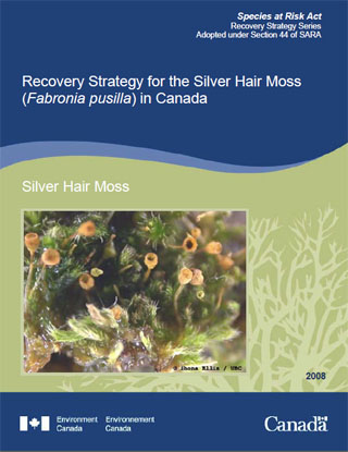 Species at Risk Act Recovery Strategy Series Recovery Strategy for the Silver Hair Moss in Canada.
