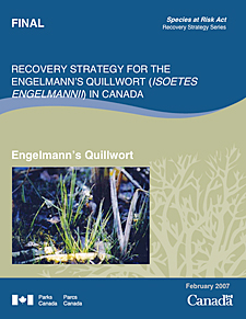Species at Risk Act Recovery Strategy Series    Recovery Strategy for the Engelmann's Quillwort (Isoetes Engelmannii) in Canada  Engelmann's Quillwort  February 2007