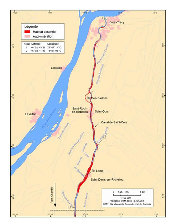 Figure 7. Habitat essentiel pour la croissance et la migration dans le secteur aval de la rivière Richelieu. (Voir description longue ci-dessous.)