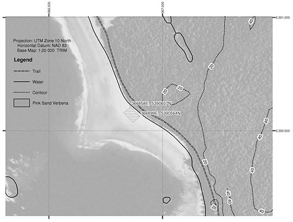 Map showing current Pink Sand-verbena critical habitat (inside the cross-hatched polygon) at Clo-oose Bay, BC.