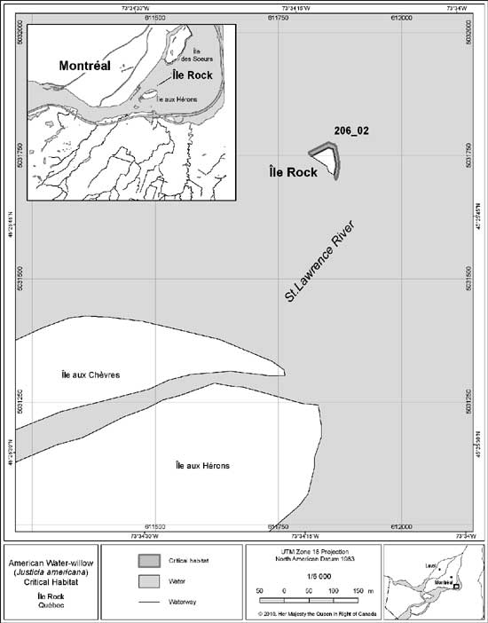 Figure 10. Ile Rock Critical Habitat