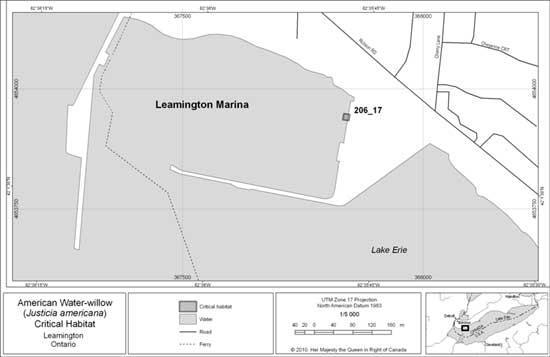 Figure 3. Leamington Critical Habitat
