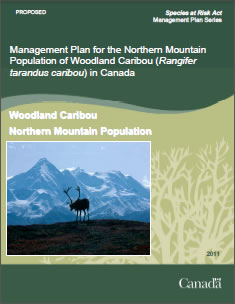 Cover of the publication: Management Plan for the Northern Mountain Population of Woodland Caribou (Rangifer tarandus caribou) in Canada [PROPOSED] – 2011