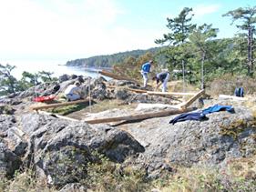Équipe construisant une clôture autour de la mare printanière abritant la lasthénie glabre, à la pointe Creyke.